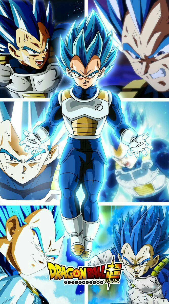 Vegeta SSB Evolution